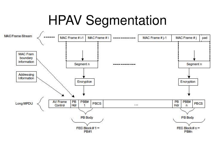 HPAV Segmentation