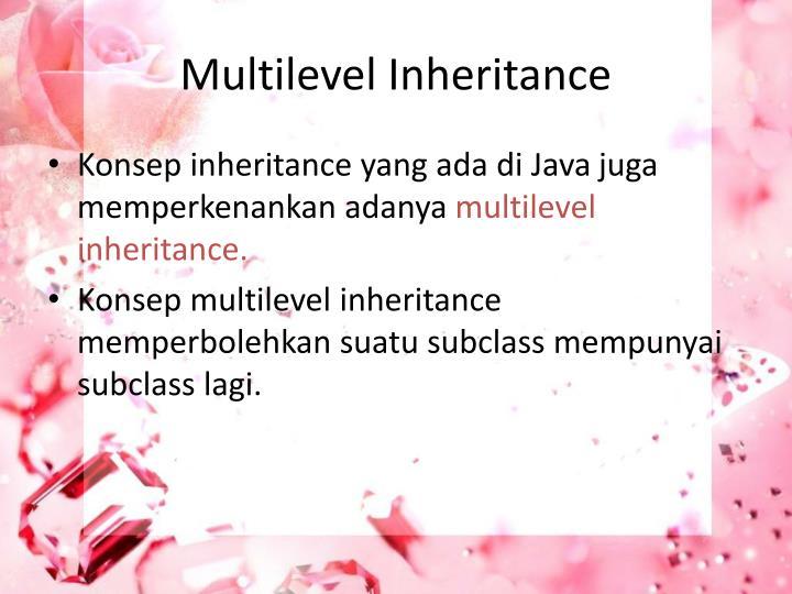 Multilevel Inheritance