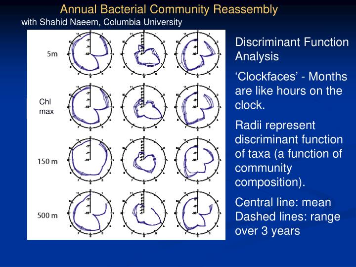 Annual Bacterial Community Reassembly