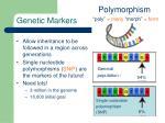genetic markers