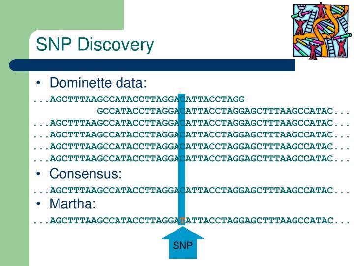 SNP Discovery