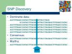 snp discovery1