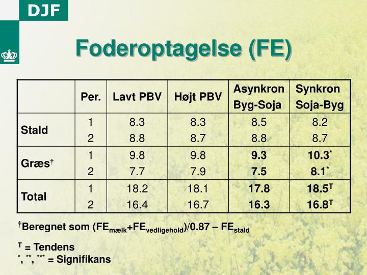 Foderoptagelse (FE)