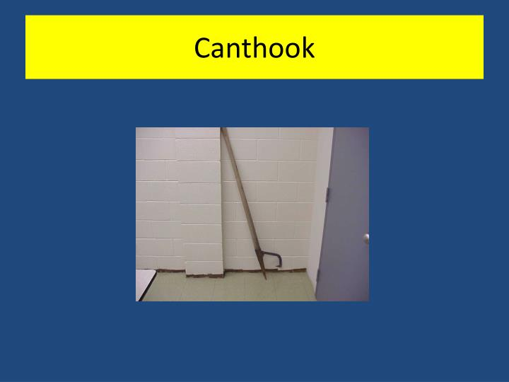 Canthook