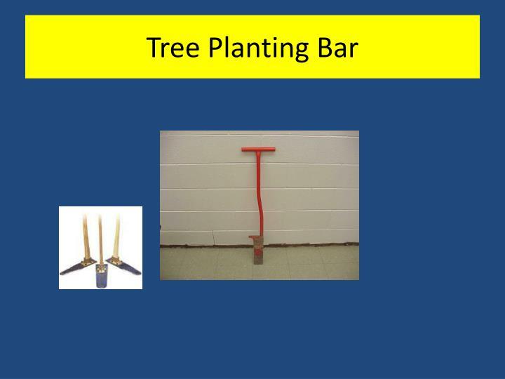 Tree Planting Bar