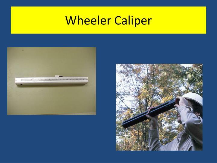 Wheeler Caliper