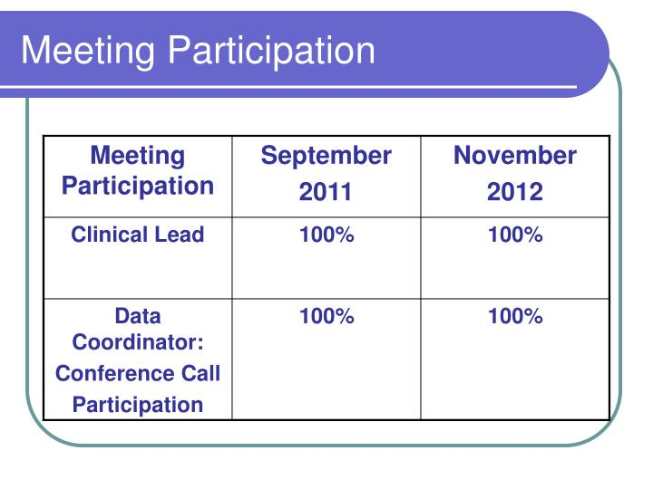 Meeting Participation