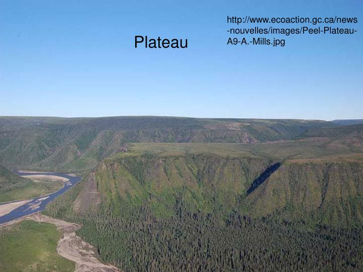 http://www.ecoaction.gc.ca/news-nouvelles/images/Peel-Plateau-A9-A.-Mills.jpg