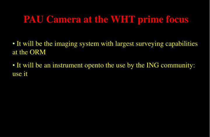 PAU Camera at the WHT prime focus