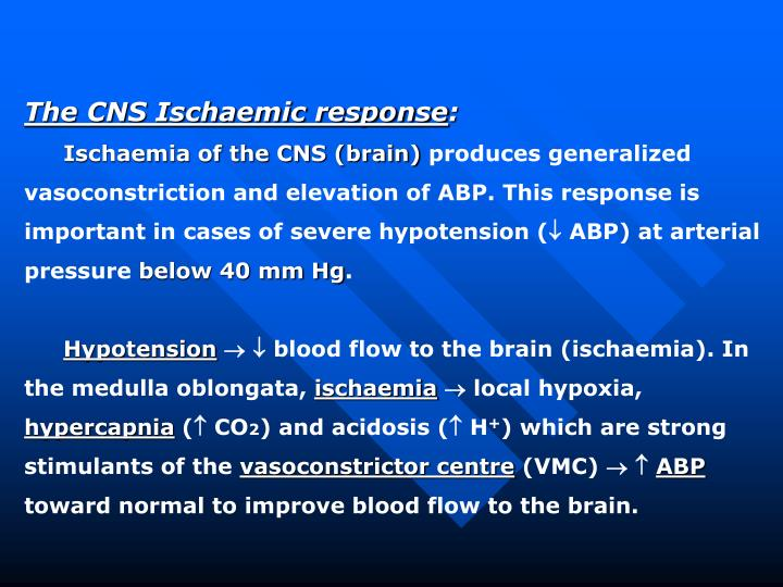 The CNS Ischaemic response