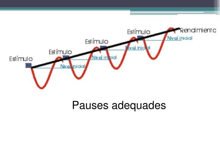 Pauses adequades