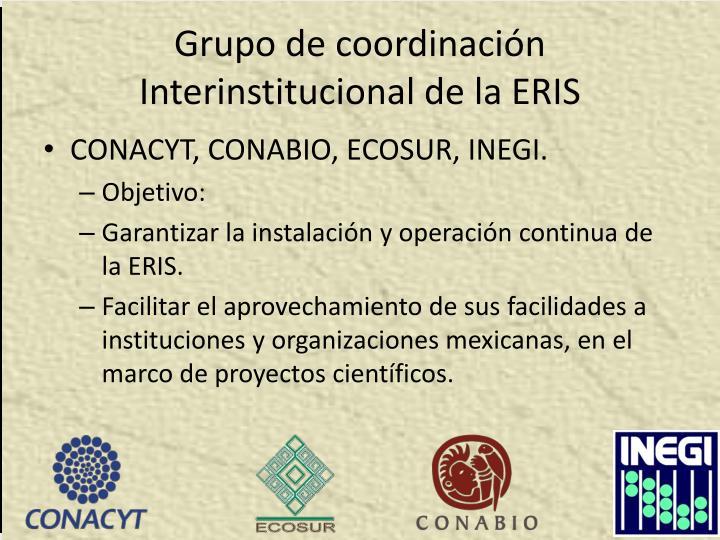 Grupo de coordinación Interinstitucional de la ERIS