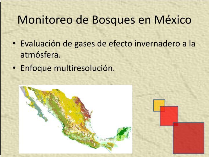 Monitoreo de Bosques en México