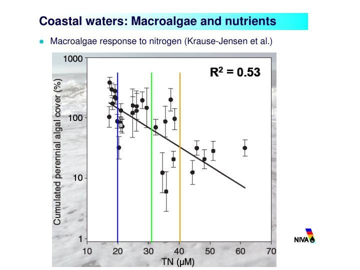 Coastal waters: Macroalgae and nutrients