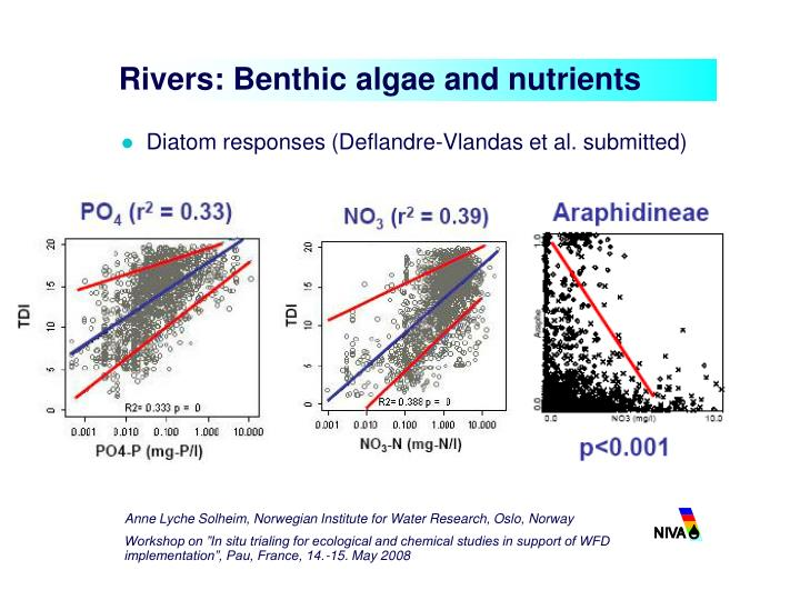 Rivers: Benthic algae and nutrients