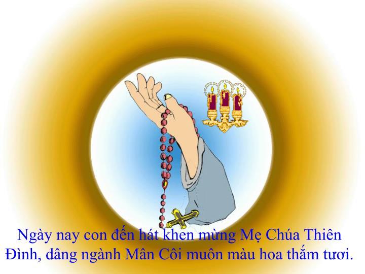 Ngày nay con đến hát khen mừng Mẹ Chúa Thiên Ðình, dâng ngành Mân Côi muôn màu hoa thắm tươi.