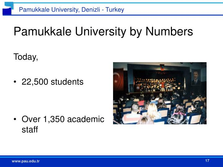 Pamukkale University by Numbers