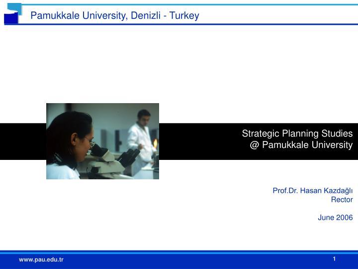 Strategic Planning Studies