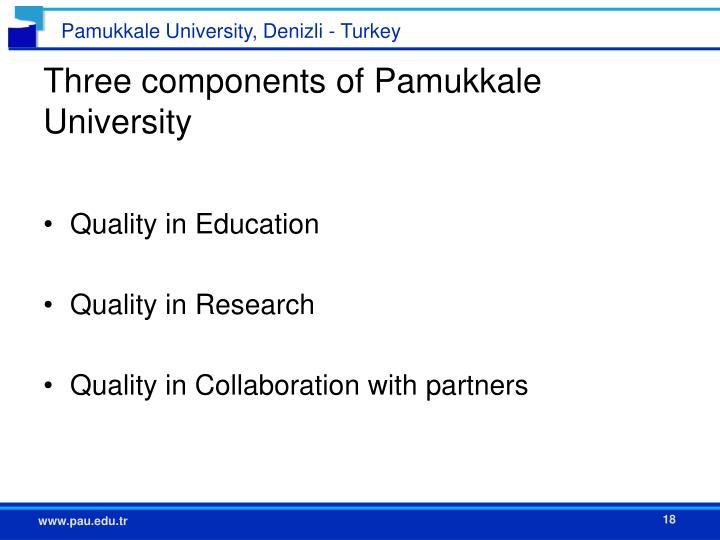 Three components of Pamukkale University