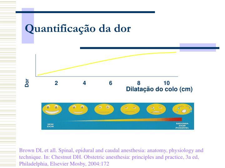 Quantificação da dor