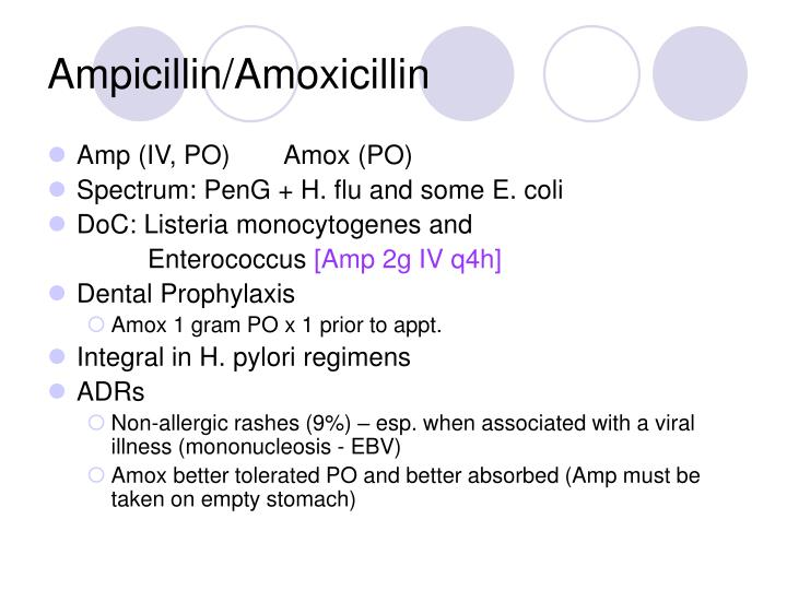 Ampicillin/Amoxicillin