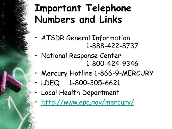 Important Telephone Numbers and Links