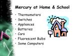 mercury at home school