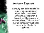 mercury exposure3