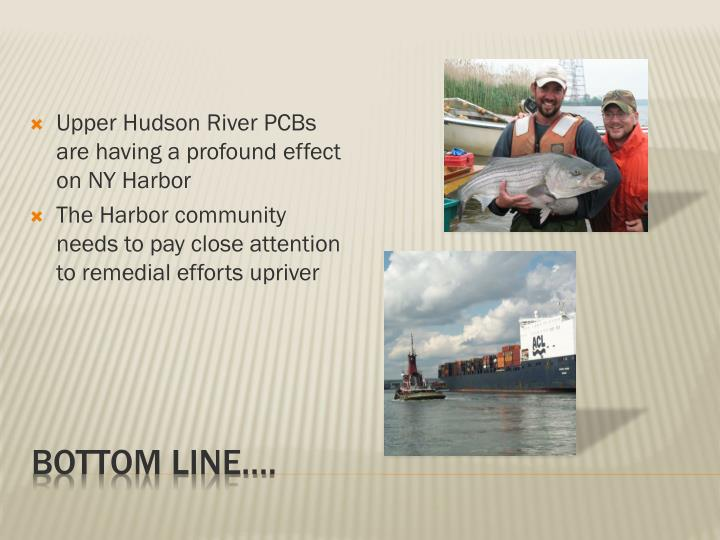 Upper Hudson River PCBs are having a profound effect on NY Harbor