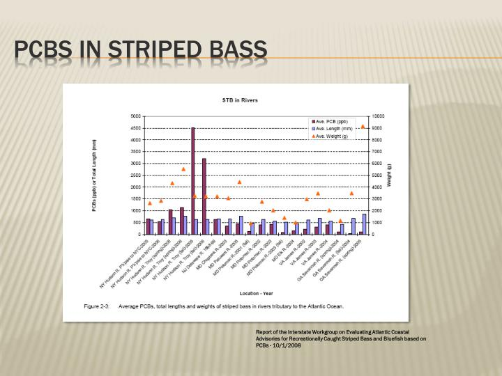 PCBs in Striped Bass