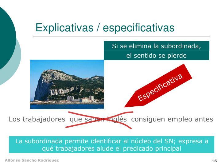 Explicativas / especificativas