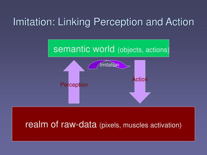 Imitation: Linking Perception and Action