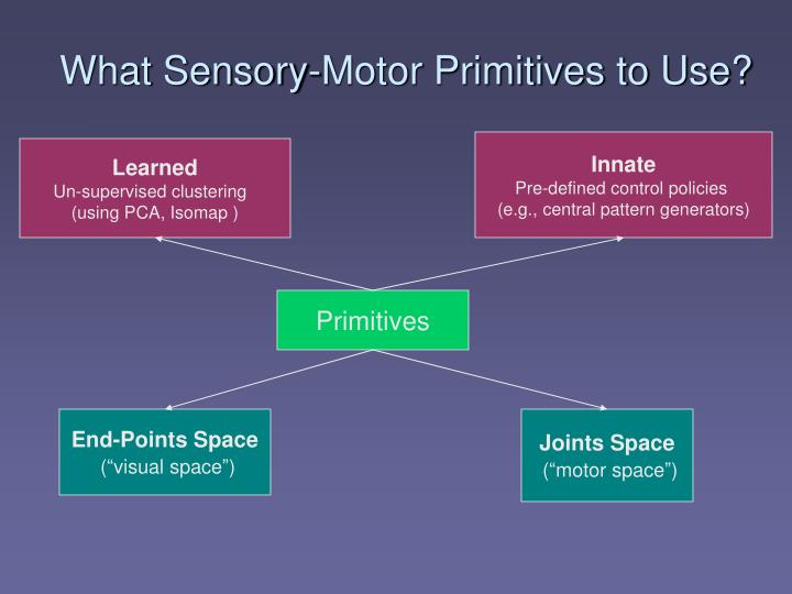 What Sensory-Motor Primitives to Use?