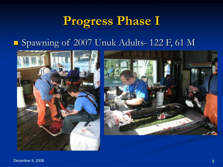 Progress Phase I