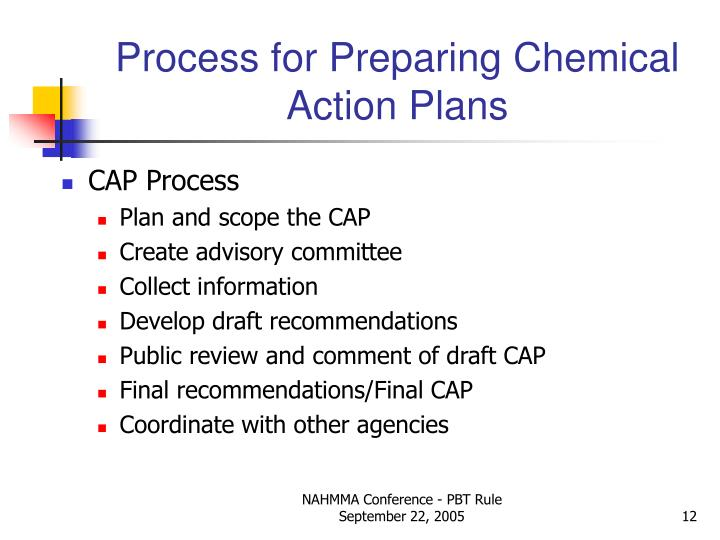 Process for Preparing Chemical Action Plans