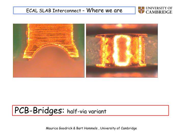 ECAL SLAB Interconnect –