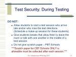 test security during testing1