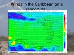 winds in the caribbean on a random day