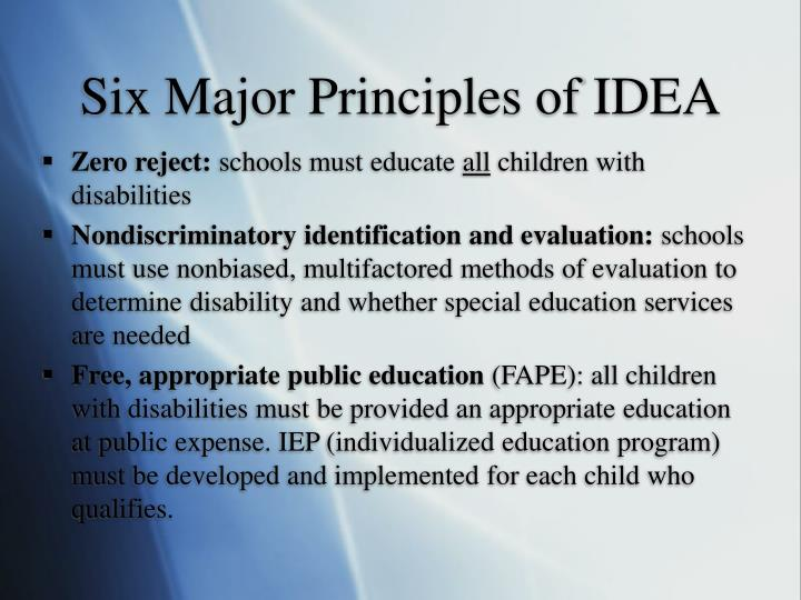 Six Major Principles of IDEA