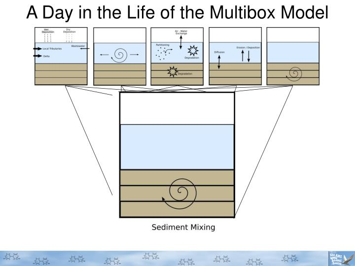 A Day in the Life of the Multibox Model