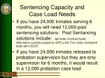 sentencing capacity and case load needs