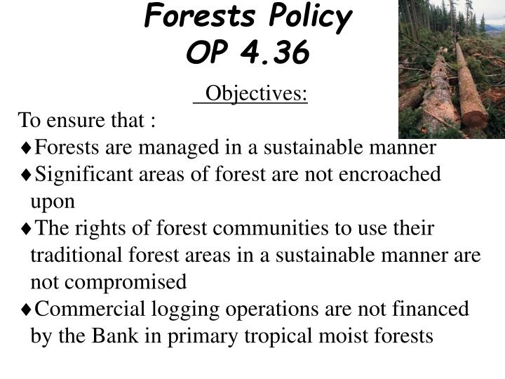 Forests Policy OP 4.36