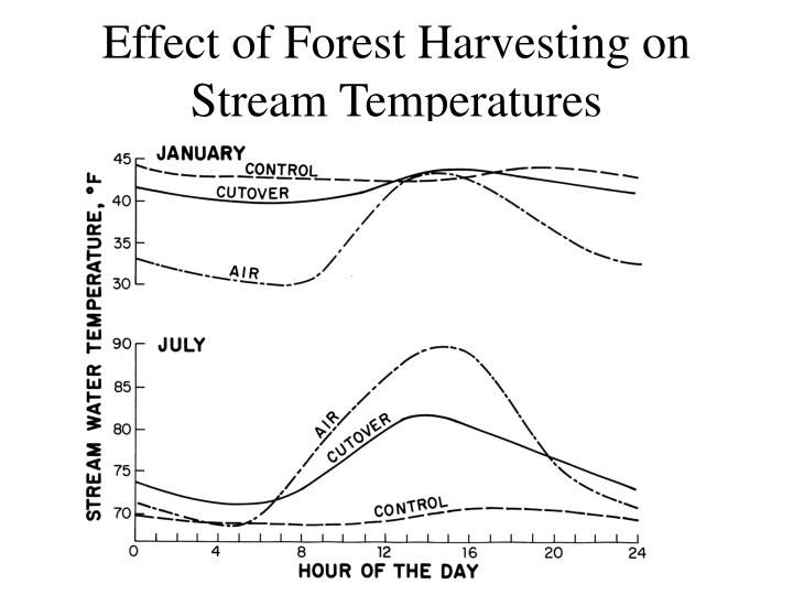 Effect of Forest Harvesting on Stream Temperatures