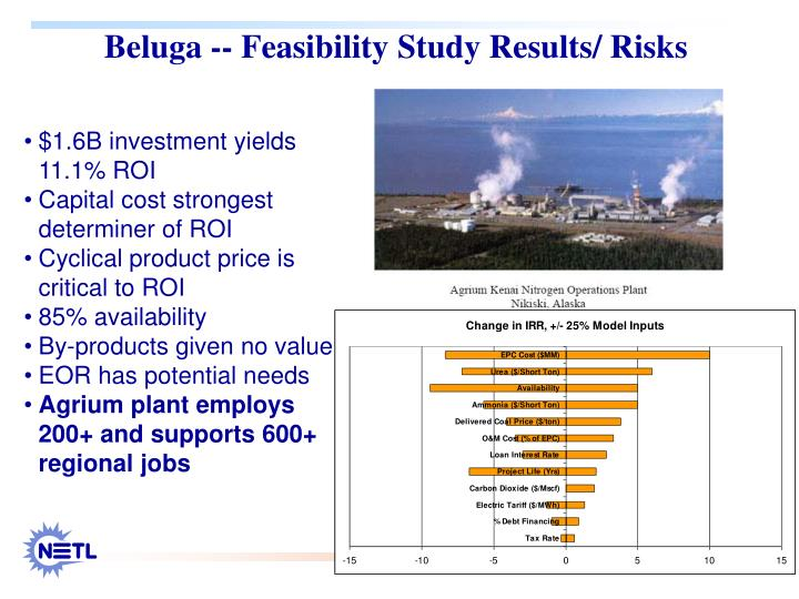 Beluga -- Feasibility Study Results/ Risks
