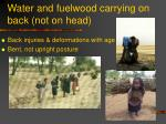 water and fuelwood carrying on back not on head