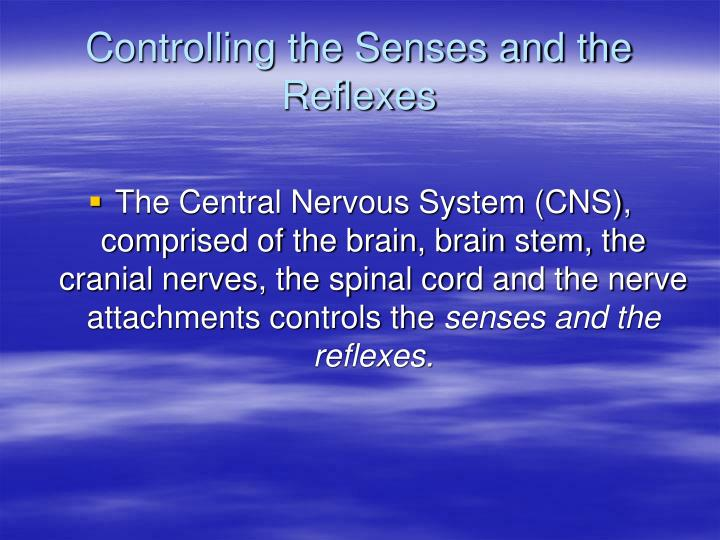 Controlling the Senses and the Reflexes