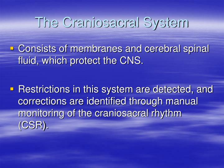 The Craniosacral System