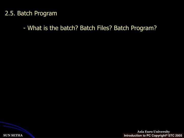 2.5. Batch Program