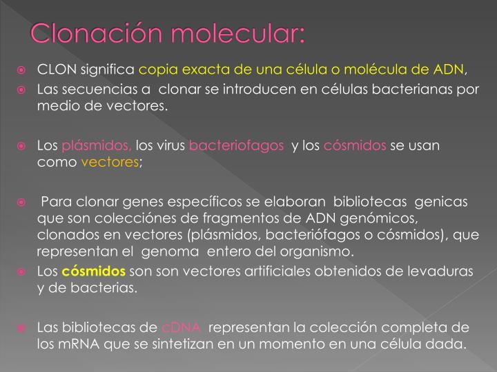 Clonación molecular: