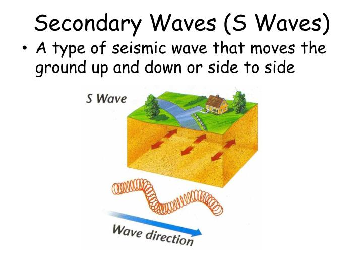 Secondary Waves (S Waves)
